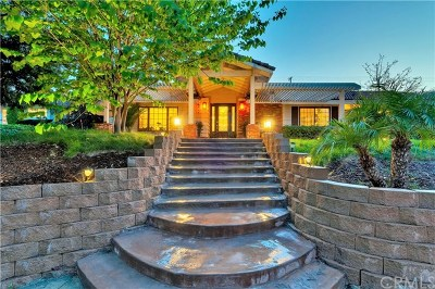 Fullerton Single Family Home For Sale: 3019 San Juan Drive