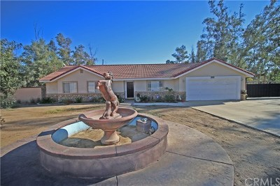 Perris Single Family Home For Sale: 20440 Brown Street