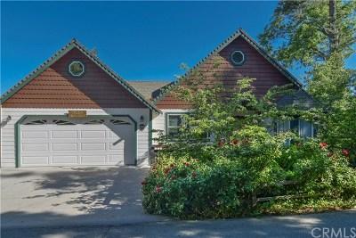 Lake Arrowhead Single Family Home For Sale: 27696 St Bernard Lane
