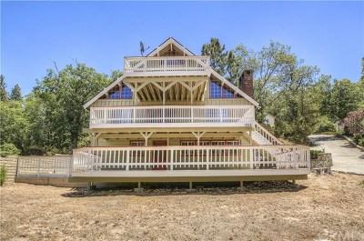 Lake Arrowhead Single Family Home For Sale: 1055 Carousel Road
