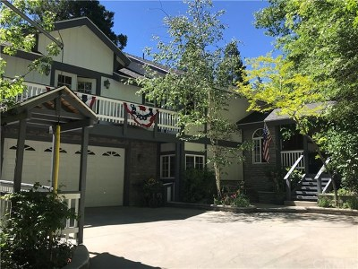 Twin Peaks Single Family Home For Sale: 683 Maxson Drive
