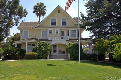 Redlands Single Family Home For Sale: 1580 Elizabeth Street