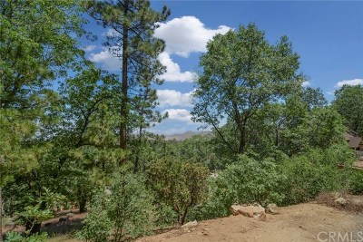 Lake Arrowhead CA Residential Lots & Land For Sale: $27,000