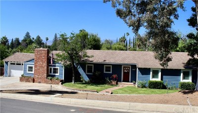 Redlands Single Family Home For Sale: 1427 Elizabeth Crest Drive