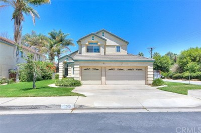 Redlands Single Family Home For Sale: 1245 Morrison Drive