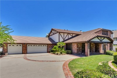 Yucaipa Single Family Home For Sale: 37010 Oak View Road