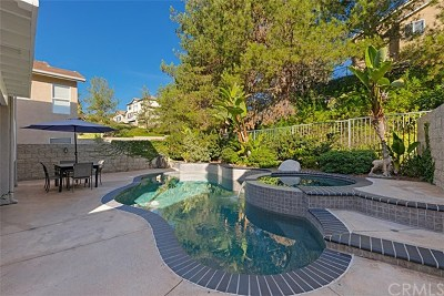Trabuco Canyon CA Single Family Home For Sale: $810,000