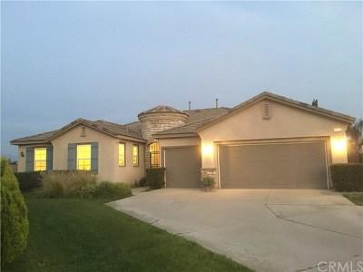 San Bernardino Single Family Home For Sale: 1923 Ginkgo Street