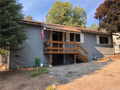 Running Springs Area Single Family Home For Sale: 30707 Live Oak Drive