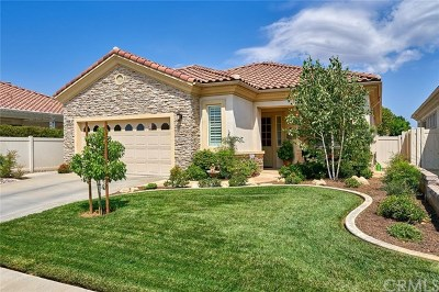Beaumont Single Family Home For Sale: 1028 Coto De Caza Court