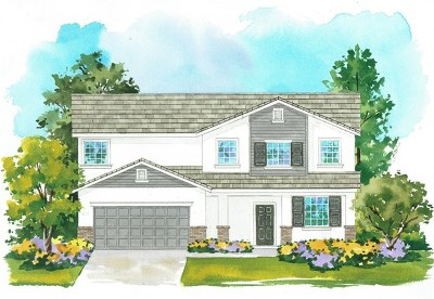 Moreno Valley Single Family Home For Sale: 24820 El Braso Drive