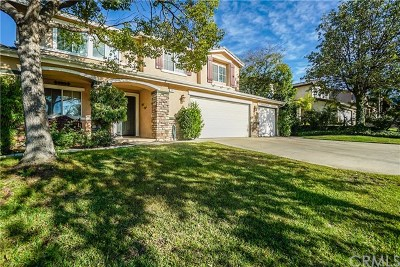 Corona Single Family Home For Sale: 3611 Brentridge Drive