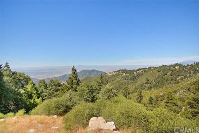 Running Springs Area Single Family Home For Sale: 2745 Deer Creek Road
