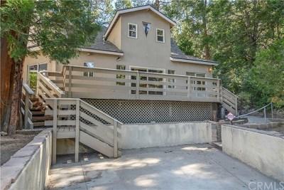 Lake Arrowhead Single Family Home For Sale: 221 John Muir Road
