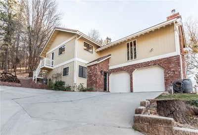 Running Springs Area Single Family Home For Sale: 30125 Skyline Drive