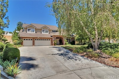Redlands Single Family Home For Sale: 30652 Kristin Court