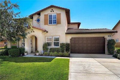 Menifee Single Family Home For Sale: 28406 Stormy Skies Circle
