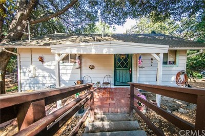 Crestline Single Family Home For Sale: 171 Wylerhorn Drive