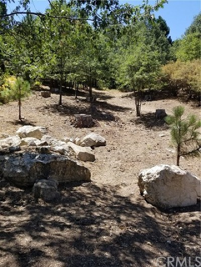 Lake Arrowhead CA Residential Lots & Land For Sale: $70,000