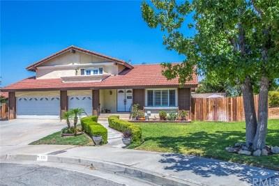 Redlands Single Family Home For Sale: 551 Iris Street