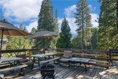 Lake Arrowhead Single Family Home For Sale: 645 Tunnel Court