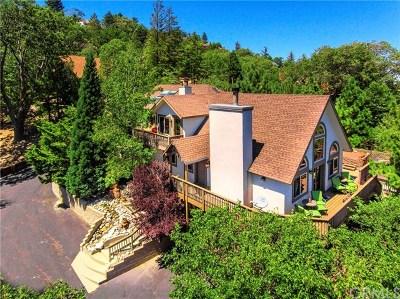 Lake Arrowhead Single Family Home For Sale: 1214 Portillo Drive