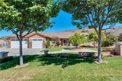 Yucaipa Single Family Home For Sale: 35816 Country Ridge Road