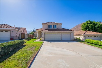 Colton Single Family Home For Sale: 2596 Gunnison Way