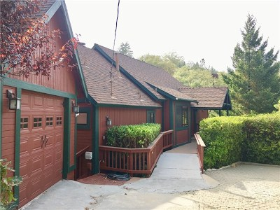 Lake Arrowhead Single Family Home For Sale: 1280 Innsbruck Drive