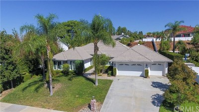 Redlands Single Family Home For Sale: 690 Bradbury Drive