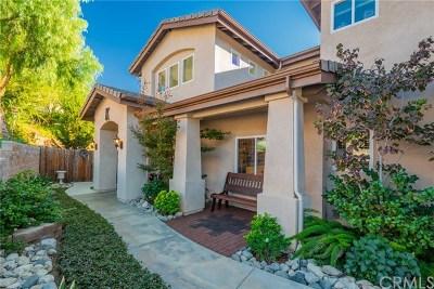 Redlands Single Family Home For Sale: 937 Carob Street