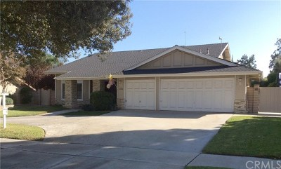 Redlands Single Family Home For Sale: 1321 W Olive Avenue