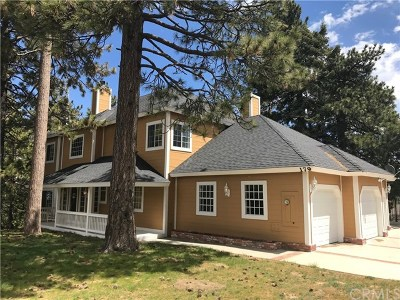 Lake Arrowhead Single Family Home For Sale: 179 Grandview Drive