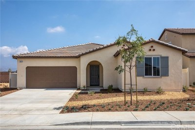 Beaumont Single Family Home For Sale: 36632 Sevilla Way