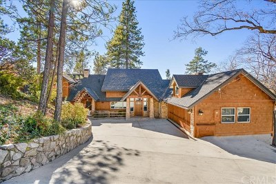 Lake Arrowhead Single Family Home For Sale: 28943 N. Shore Road