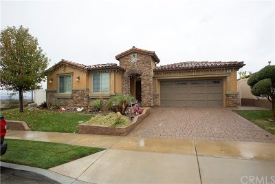 Calimesa Single Family Home For Sale: 166 Country Club Drive