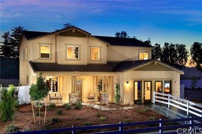 San Jacinto Single Family Home For Sale: 1534 Misty Meadow Lane