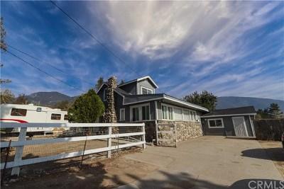 San Bernardino Single Family Home For Sale: 1537 Devore Road