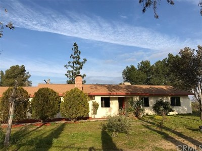 Perris Single Family Home For Sale: 22910 Country Squire Road