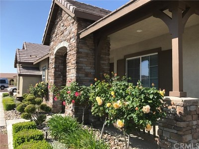 Apple Valley Single Family Home For Sale: 12316 Macintosh Street