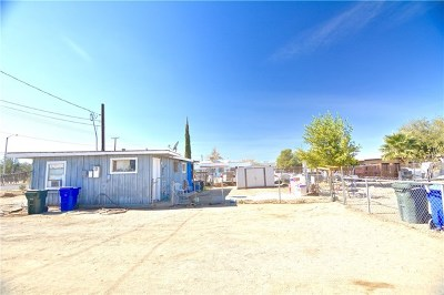 Adelanto Single Family Home For Sale: 12056 Bartlett Avenue