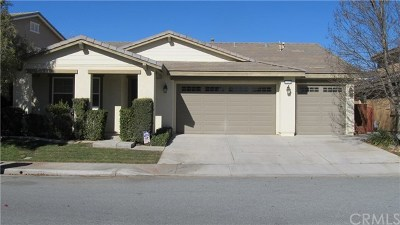 Beaumont Single Family Home For Sale: 1348 Mandrake Way