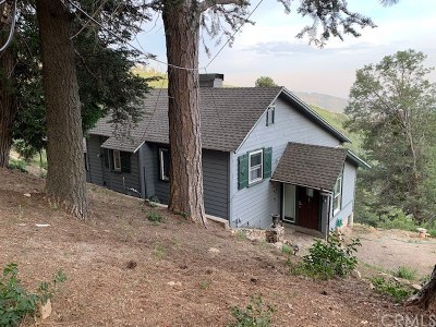 Lake Arrowhead Single Family Home For Sale: 28681 Willow Road
