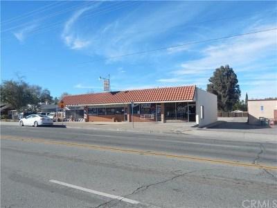 Beaumont Commercial For Sale: 975 Beaumont Avenue