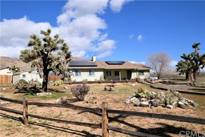 Apple Valley Single Family Home For Sale: 24568 Cuyama Road