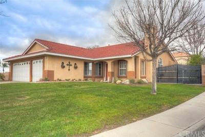 San Bernardino Single Family Home For Sale: 548 S Dallas Avenue