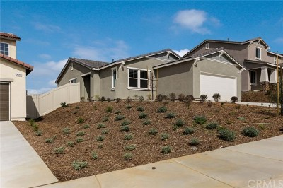 Beaumont Single Family Home For Sale: 14245 Capezzana Lane