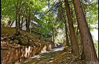 Lake Arrowhead Single Family Home For Sale: 27941 Rainbow Drive