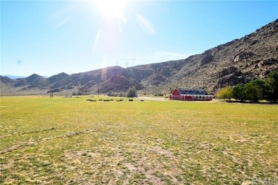 Lucerne Valley Single Family Home For Sale: 29611 Exeter Street