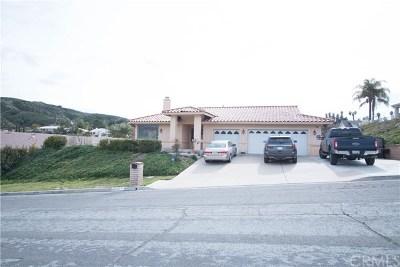 Hemet Single Family Home For Sale: 45533 Denizen Heights Road